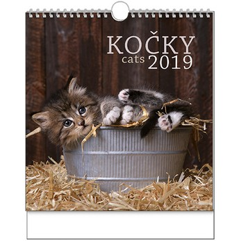 Kočky (nástěnný kalendář) – BNO1